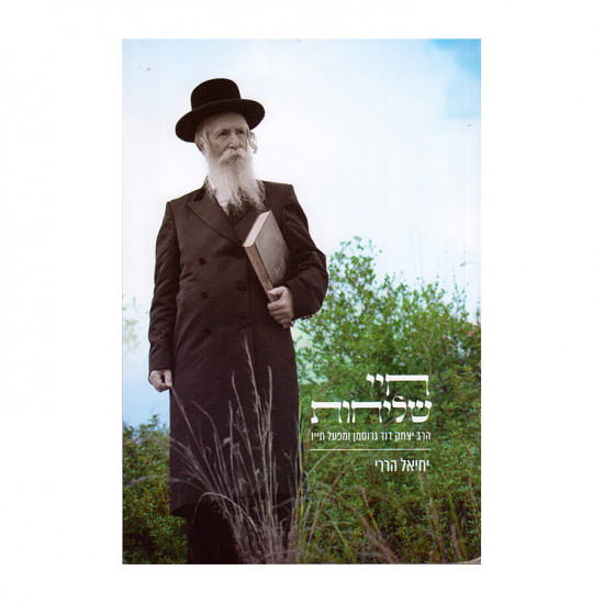 Meged Chadash AL Hilchos Shabbos / מגד חדש על הלכות שבת