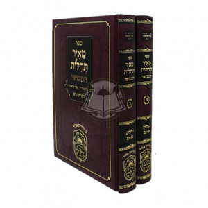 Meir Tehillos Hamevuar - Sefer Tehillim / מאיר תהלות המבואר ספר תהלים