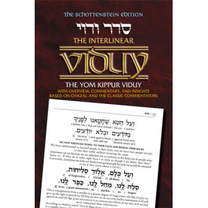 Interlinear Viduy / Confession